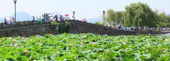 相约杭州,和他们来一场跨越千年的邂逅