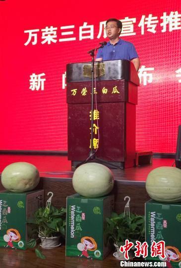 万荣县县长李永辉宣传推介三白瓜。 任丽娜 摄
