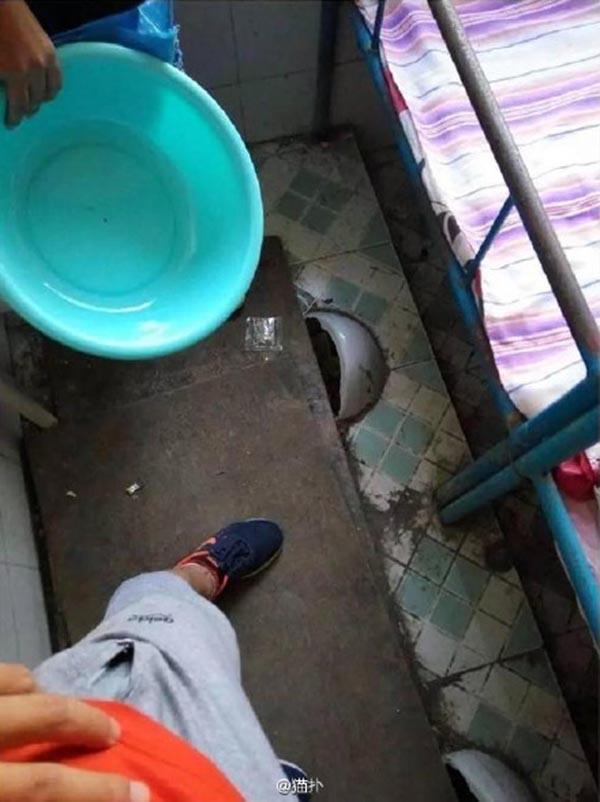 图片显示,厕所便池蹲位上面仅铺板遮盖。