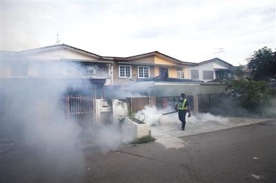 股票配资 时刻9月6日,马来西亚吉隆坡,清洁防疫职员睁开灭蚊步履。