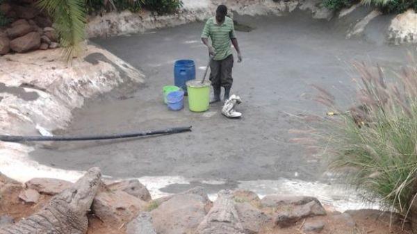 穆克的养殖场,鳄视眈眈下的工作人员。(图片来源:英国广播公司网站)