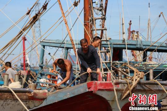 """潮州三百门港渔船回港,渔民加固渔船防御台风""""莫兰蒂""""。 余秋松 摄"""
