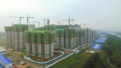 固安遍地房地产开发项目。