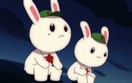 老兵心愿:写给那兔的情书