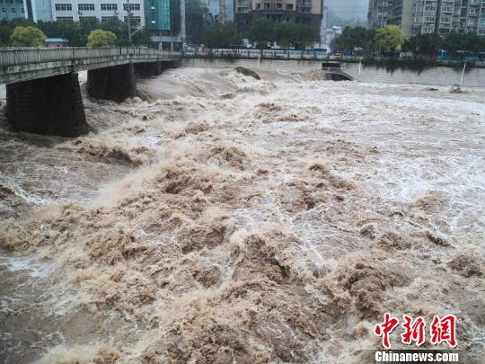 暴雨致浙江文成河水上涨。 黄小青 摄