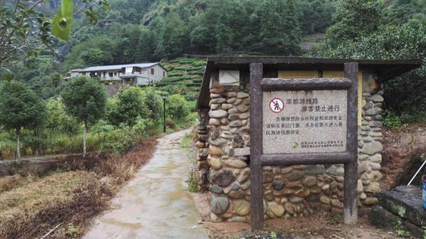 """兰汤村去天游峰的进山口,挂着一块""""非旅游线路,游客禁止通行""""的警示牌。 本文图片均为澎湃新闻记者 王选辉 图"""