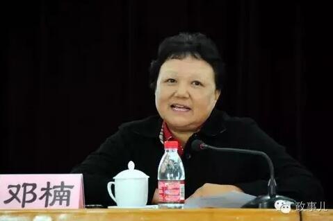 """据《科技日报》报道,邓楠在科协工作的6年多时间(2004年10月至2011年5月),主持科协日常工作,""""她倾尽心力建设中国科协这个'科技工作者之家',给科协工作带来巨大的改变""""。"""