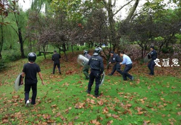 特警在围捕黑熊。