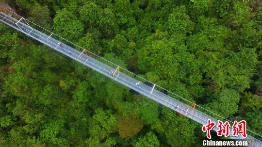 资料图:9月25日,广西柳州市融水苗族自治县双龙沟景区的悬索玻璃桥。 谭凯兴 摄