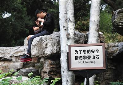 """10月2日,景山公园,两名游客坐在假山上,对一旁竖立的""""请勿攀登山石""""牌子视而不见。"""