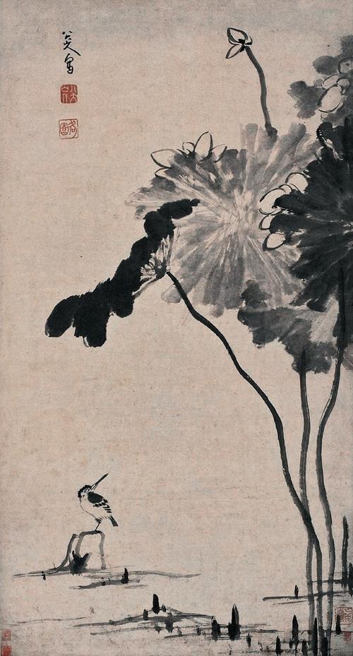 清 朱耷《风荷翠鸟》
