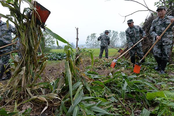 本地装备部出动了近百人,分红三个小组,对全村的草垛,杂物堆以及别的眼镜蛇能够藏身的中央停止排查。