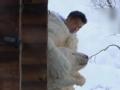 《十二道锋味第三季片花》第六期 谢霆锋遭比基尼美女逼脱衣 扮白熊吓跑萧敬腾