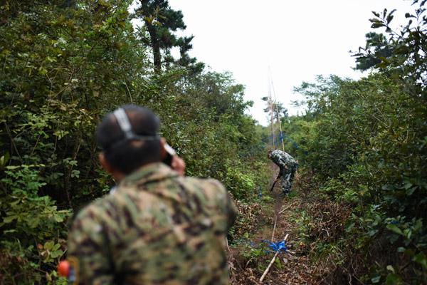 往往,旧网刚被拆,新网又布下。巡逻队员也时常上山来拆鸟网,但没多久,又鸟网密布。