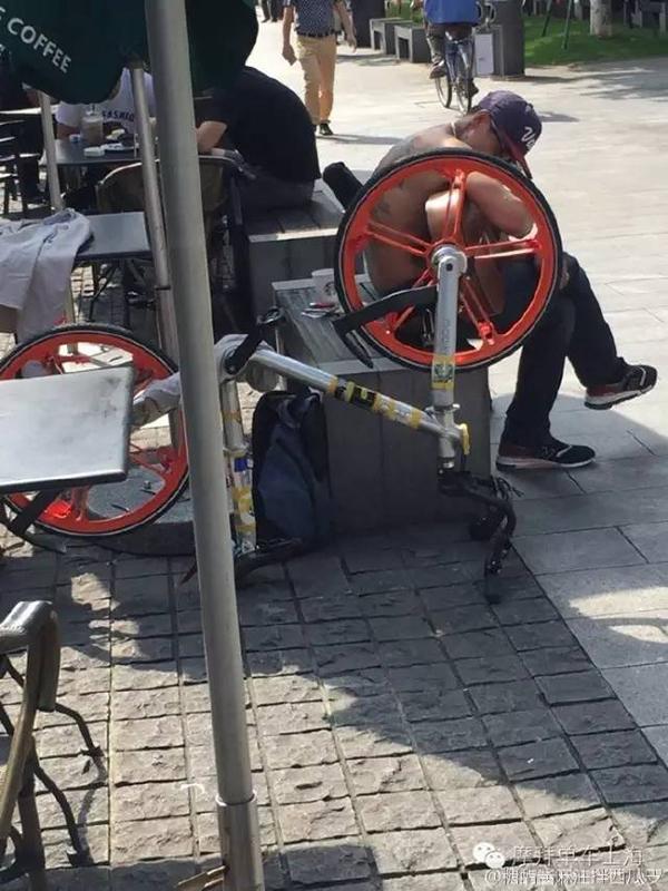 """网友拍下的涉事大发5分PK10与共享单车照片。""""摩拜单车上海""""官方微信公众号 图"""