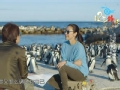 《十二道锋味第三季片花》第八期 杨紫琼蠢萌模仿企鹅 回忆亡父失控流泪