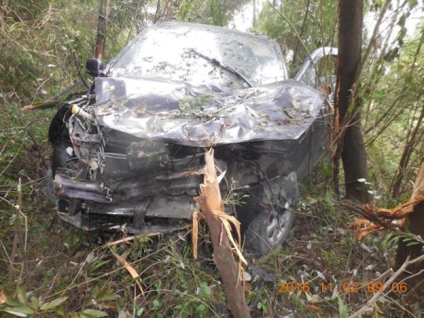 一辆轿车,轿车车身和车头已经损毁,车内一片狼藉,周围树木也被撞断,但车内并没有驾驶司机。