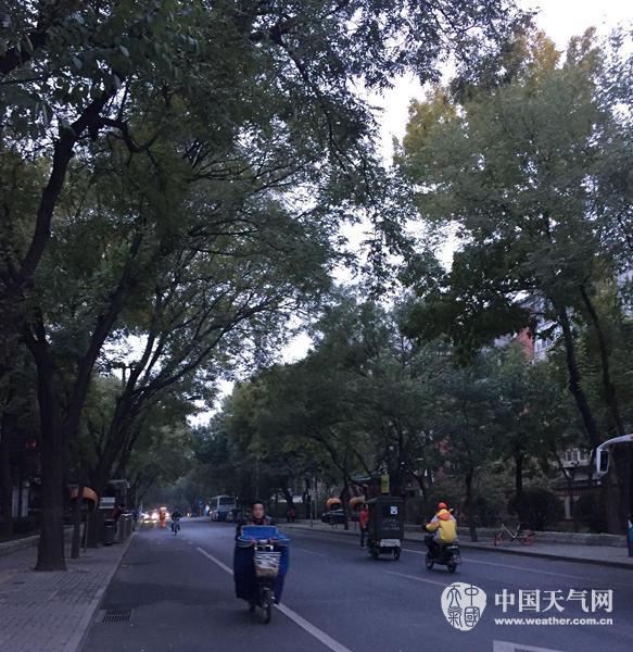 7日早晨,北京海淀雾霾消散,但天气较凉,市民包裹严实。(张永宁 摄)