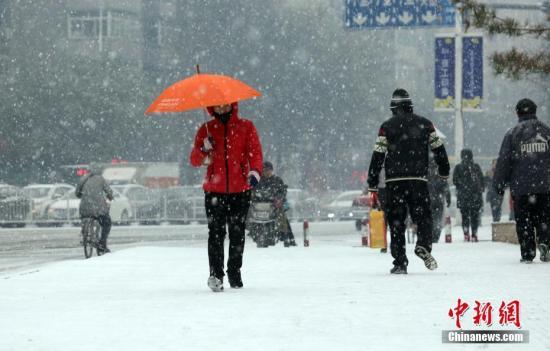 11月7日,立冬日,辽宁沈阳降下今年冬天第一场雪。 中新社发 黄金昆 摄 CNSPHOTO