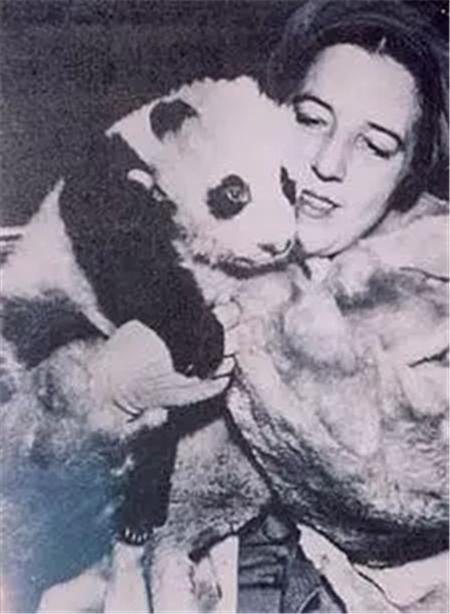 """而""""苏琳""""在美国的亮相,更是吸引了一大批捕猎者。"""