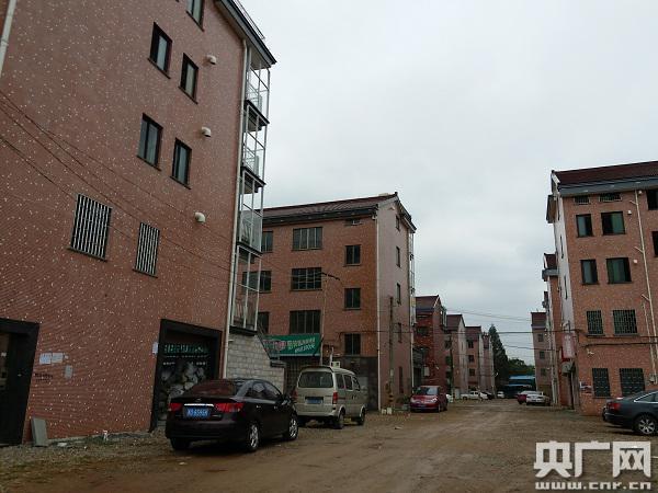 合新村内的楼房已建好 但道路绿化还未修整