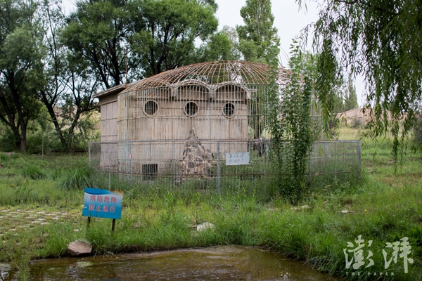 核城公园里关动物的笼子,现已废弃。