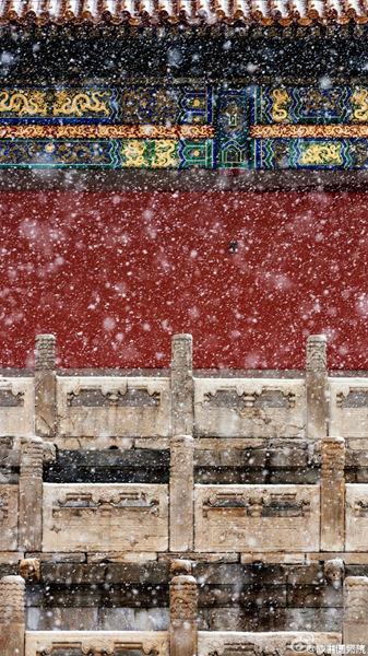客岁11月22日,雪中的故宫。(来历:@故宫博物院)