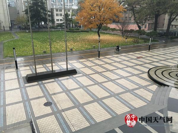 今天上午,北京海淀区小雨持续。(张海莺 摄)