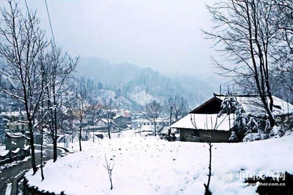 11月22日,陕西安康迎来了今冬的首场降雪。(安妮 摄)