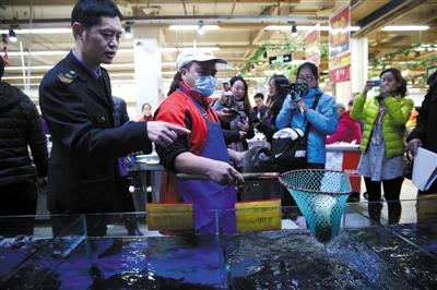 11月25日,通州卜蜂莲花超市,一名超市员工在食药监局工作人员的监督下将淡水鱼捞出取样,准备带回实验室检测。
