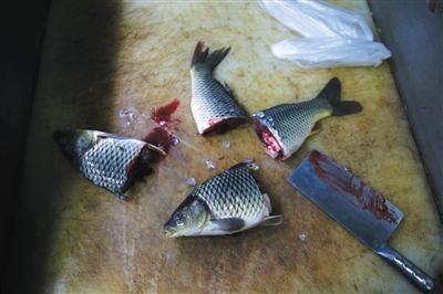 通州卜蜂莲花超市,一名超市员工在食药监局工作人员的要求下将淡水鱼切开,准备带回实验室检测。