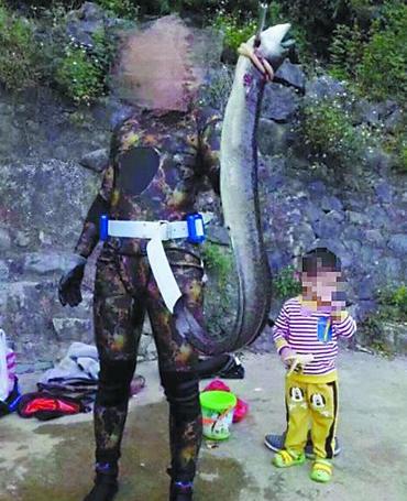 11月22日,南宁市武鸣区灵婉湖花鳗鲡鱼王被猎杀的相片在微博上传开,暴虐的究竟影响到了广西泛滥潜水喜好者。感触愤恨和可惜的网友示意,必需要让偷猎者遭到法令的制裁。今朝,南宁丛林公安及渔政部分已接到关联检举,正在考察傍边。