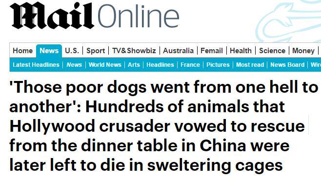 """每日邮报报道,标题用了醒目的""""这些可怜的狗从一个地狱掉进另一个"""""""