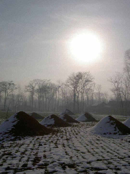 初进银庄,刘倩被村头的坟堆震撼
