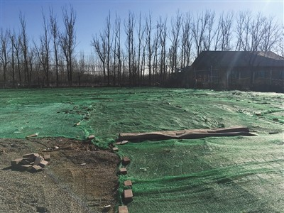 昨天,北京百旺农业栽培园,停放在此的房车移走后,地盘被铺上了绿色尼龙网。新京报记者 曾金秋 摄
