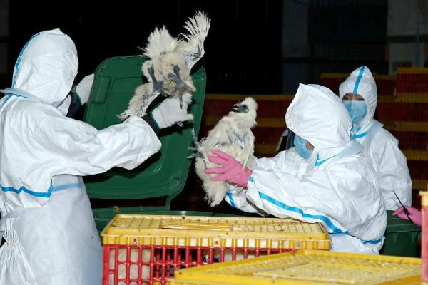 澳门3校现流感群集感染病例涉33人 无重症情况