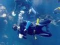 海洋搜救队(上)