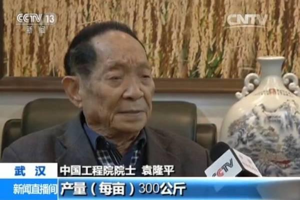 """袁隆平再脱手!用淡水种出的""""白色水稻""""实验胜利 好吃吗?"""