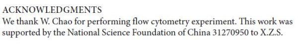 """�n春雨�n�}�M喝的NgAgo�文在""""致�x""""中提到,�@篇�文得到了��家自然科�Wξ基金���椤�31270950""""的�目支持。"""