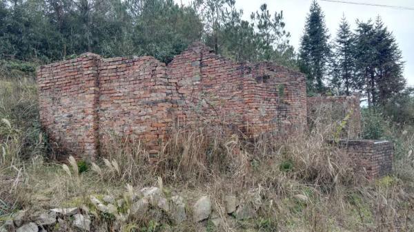 13年前,柘荣县城郊乡福基岗村石楼坪山上一废弃的旧房子发现装有尸块的包装袋。澎湃新闻记者 王选辉 图
