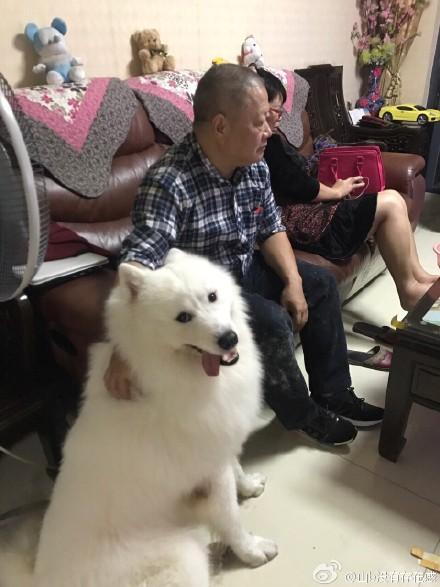 @沉�思:我爸在���昨夜干�嵬纯嗔�。
