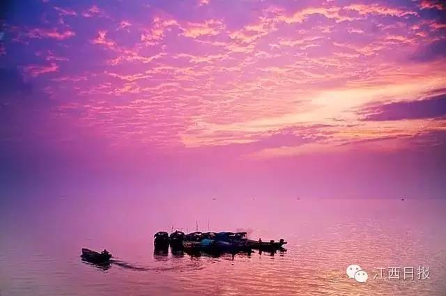 浩瀚缥缈的湖面,百鸟齐飞,山光水色间只见盛景。