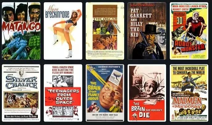 位列《金火鸡奖:好莱坞史上最糟糕成就》的部分烂片海报。