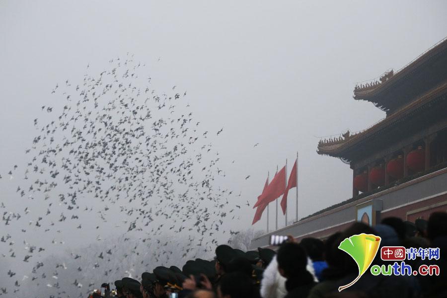升旗仪式结束后,和平鸽在数万群众的注视中飞过天安门城楼。 中国青年网记者 李拓 摄