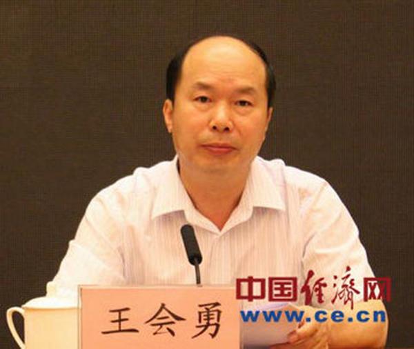 王会勇 中国经济网 图