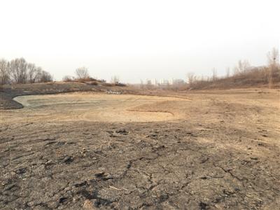 倒闭后的银泰俱乐部球场如同一片荒地,只有果岭边的大沙坑还依稀可辨。新京报记者 白雪 摄
