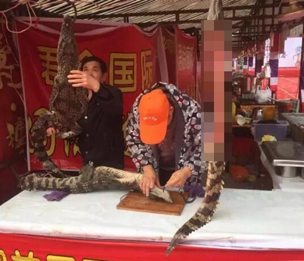 合肥一摊点当街宰杀鳄鱼现烤现卖 老板称是人工养殖暹罗鳄