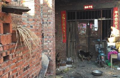 王雪的家。本版摄影/新京报记者 逯仲胜