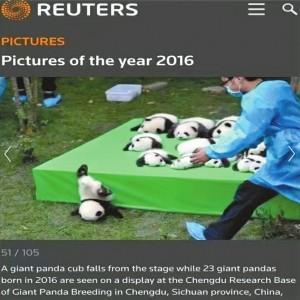 路透社2016年度图像。