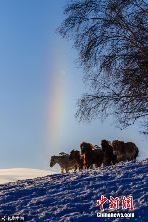 2017年01月12日,内蒙古自治区赤峰市,三九极冷气候下,日出后呈现幻日景象。开端是太阳右侧呈现酷似彩虹的光带,非常钟后,太阳左侧也对称呈现如许光带,细心看恰似有三个太阳。人们会把幻日看成一个不祥的预兆。来历于在1461年英国玫瑰和平时期,爱德华伯爵看到幻往后他鼓动戎行说这是一个不祥的预兆,士气大振,并最后取患了战役的成功。视觉国家